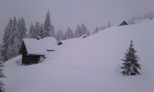 Winter 2018 - 19